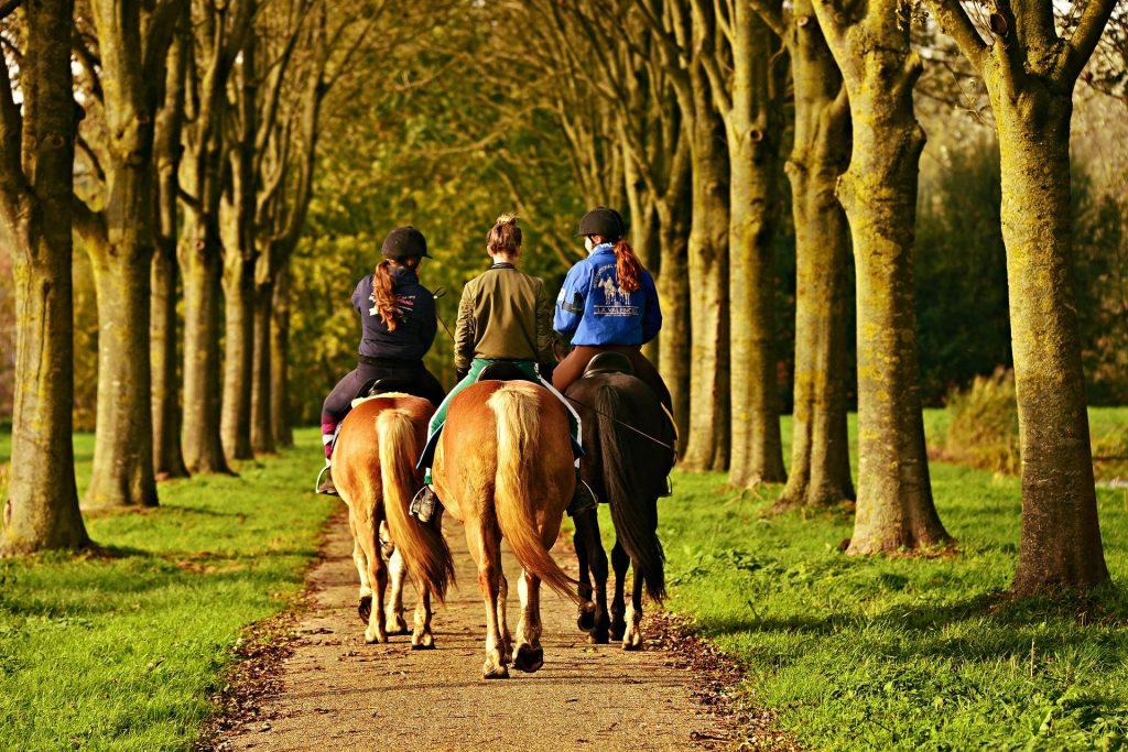 Drei junge Frauen reiten auf den Pferden